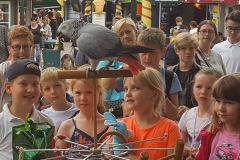 Papegojeshow-Kasper-Jensen-2020-52